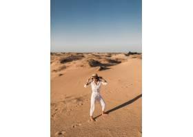 走在沙漠沙子的时髦的美丽的无忧无虑的妇女_14105407