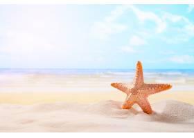 在夏天晴朗的海滩的海星在海洋背景旅行_1203662