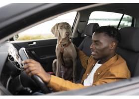 驾驶与狗的中等射击笑脸_15599144