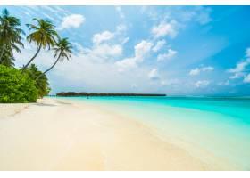 马尔代夫岛_1035266