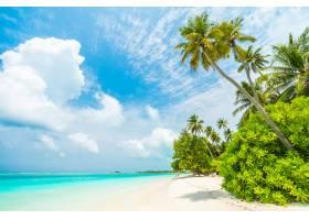 马尔代夫岛_3516109