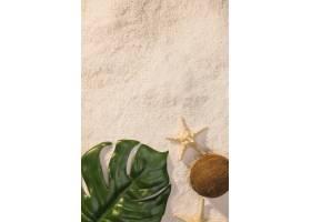 有海星的綠色葉子在海灘_4549321
