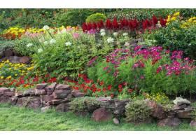 五颜六色的花在庭院里_1273868