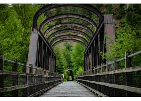 特寫鏡頭射擊了一座橋梁在公園_14192179