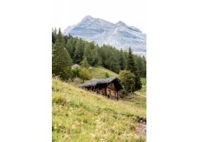 瑞士阿爾卑斯垂直射擊_15914805