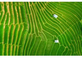 米大陽臺鳥瞰圖在禁令Pa的邦在清邁泰國_13249903