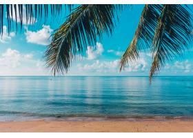 美丽的室外热带海滩和海在天堂海岛_4123433