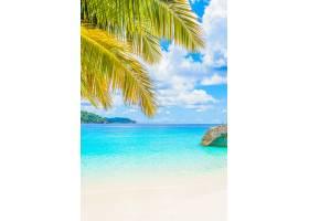 美丽的热带海滩_1114643