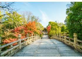 在Kiyomizudera寺廟京都日本的美好的建_1009424