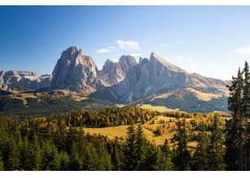 在樹蓋的象草的小山的美好的射擊在山附近在_11527510