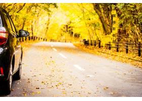 在路的汽车在秋天森林里_3796887