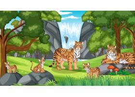 老虎家庭在与许多树的森林场面_16263159