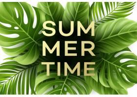 与热带棕榈叶的夏时海报_13646282