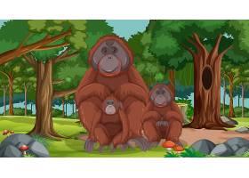在森林或雨林场面的猩猩与许多树_16262555