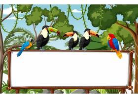 在雨林场面的空白的横幅与野生动物_13832788