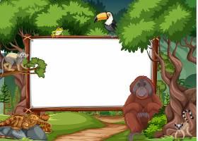 在雨林场面的空白的横幅与野生动物_16265185