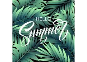 您好夏天海报与热带棕榈叶和手写刻字_13646283