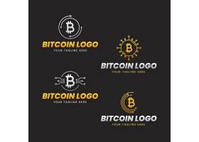 套平的比特币logo模板_14280144