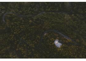 蜿蜒的高速公路在森林的中心有高大的树的_8857607
