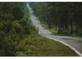 在森林里的稀薄的道路_7553702