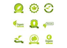 天然生态和有机产品标志用叶子_13153600