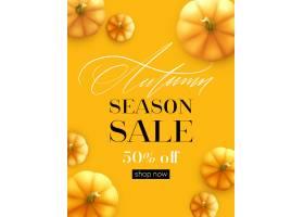 设计横幅秋天销售秋天海报设计用南瓜传_16247912