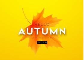 秋天横幅与字法和黄色秋天槭树叶子_14881476