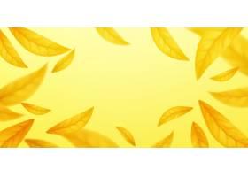 落的飞行秋叶背景在黄色背景隔绝的现实秋_16311964