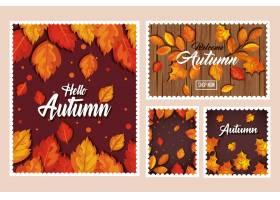 套秋天横幅卡片和无缝的样式与叶子装饰_5687078