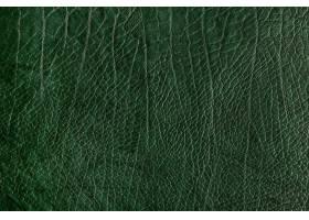 绿色皱纹皮革织地不很细背景_15440707