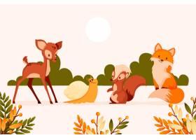 秋季动物收藏_16391256