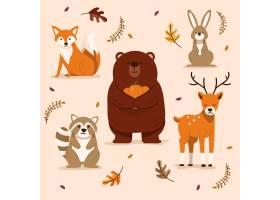 秋季动物收藏_16391264
