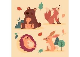 秋季动物收藏_16395806