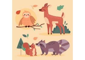 秋季动物收藏_16395818