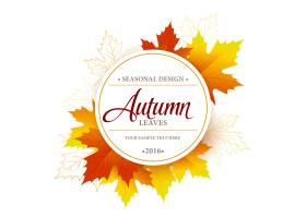 秋季季节性横幅设计_14881535