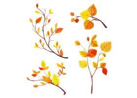 美丽的水彩秋叶集合_2693177