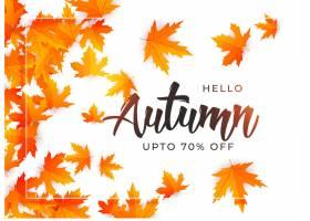 美好的秋叶背景模板_2709587