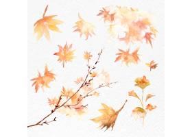 秋叶设置水彩传染媒介橙色季节性图表_17221603