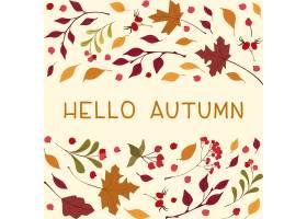 您好秋天方形框架与文本秋天野花叶子和莓果_16495333