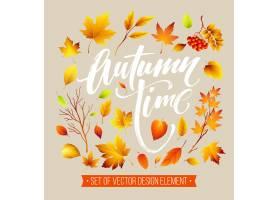 五颜六色的秋叶集合_15637411