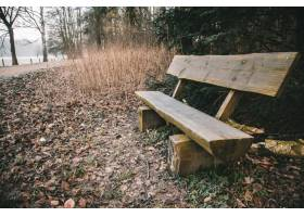 木长凳在与一个湖的绿叶围拢的公园在背景期_9852379