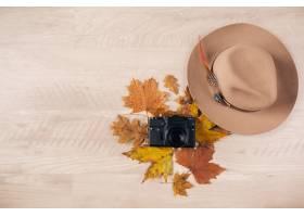 从上面看妇女样式和辅助部件秋叶时尚趋向_10883847