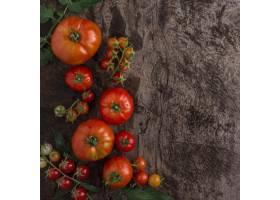 顶视图美味的西红柿框架_10109028