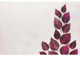 顶视图美妙地色的秋叶与拷贝空间_10369447