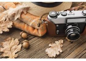 高角度照相机与秋叶和橡子_9466909
