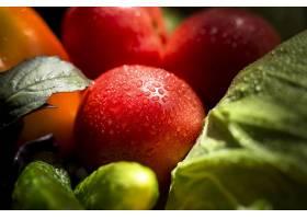 顶视图各种各样的新鲜的秋季蔬菜和水果_9851341