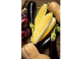 顶视图季节性蔬菜安排_9859197