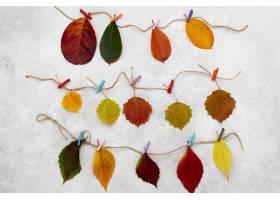 美丽的秋叶顶视图在字符串的_11282273