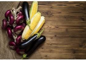 秋季蔬菜安排与拷贝空间_9852785