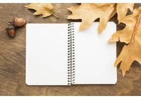 笔记本顶视图有秋叶和橡子的_9467498